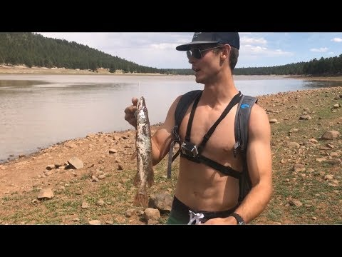 Arizona Fishing For Northern Pike, Smallmouth Bass And Rainbow Trout