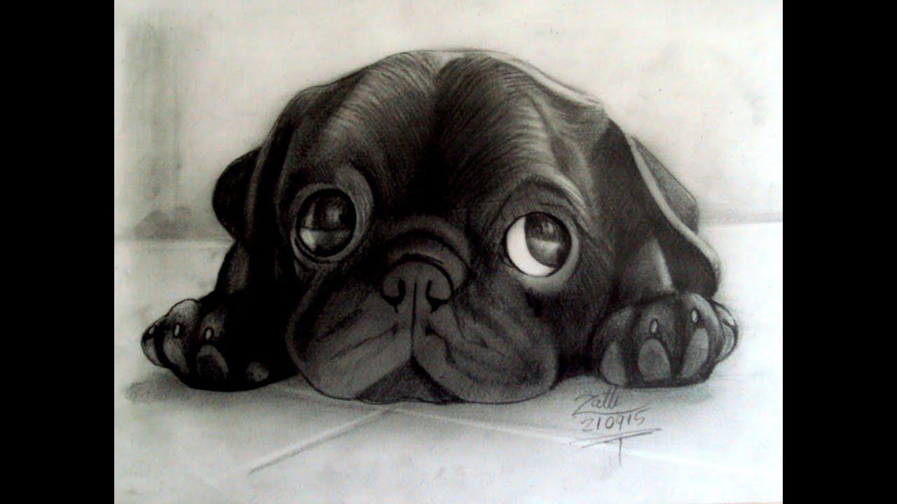 Como Desenhar Um Cachorro Em 3d Youtube