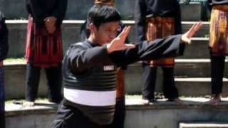 Arte Martiale Stiluri de lupta - Indonezia [Fight is violence and ocult]