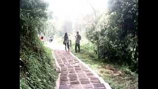 Download Video ngentot di hutan tak ada yang menegur MP3 3GP MP4
