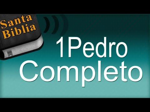Libro 1 Pedro