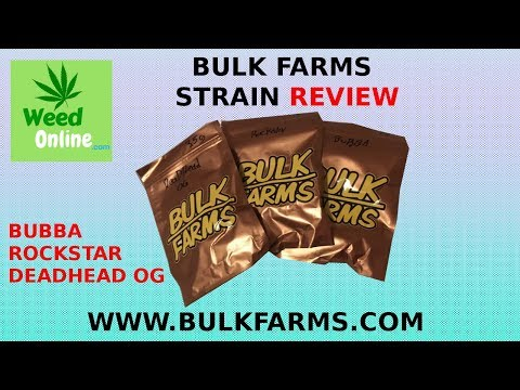 Bulk Farm's Bubba, RockStar, & Deadhead OG Strain Reviews - WeedOnline.com