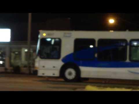 Buses In Fort Lauderdale And Miami, Florida