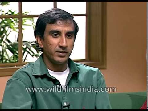Milan Luthria, Indian film director on Hindi film Kachche Dhaage