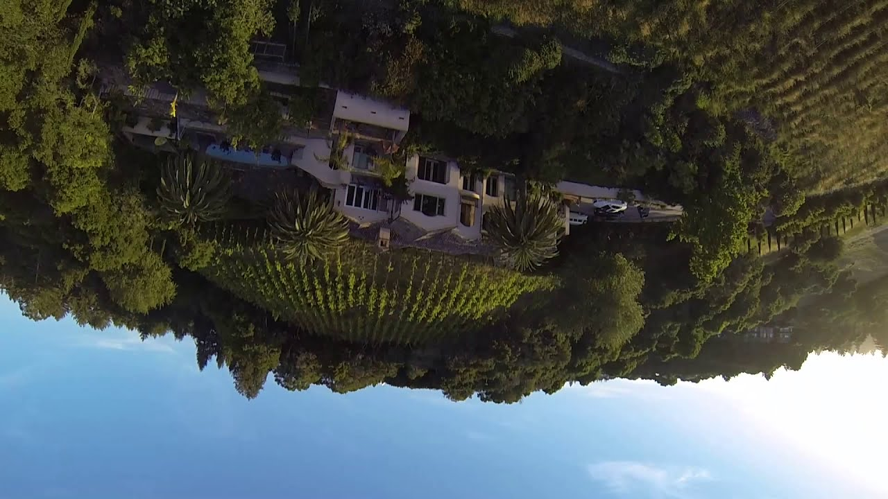 Beautiful Central Coast hillside vineyard FPV flying! #fpv #drones #santacruz #crossfire #gopro #tbs картинки