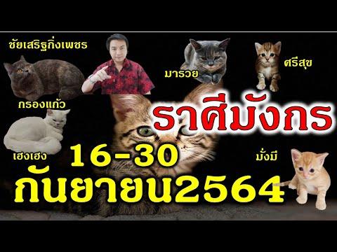 ราศีมังกร พลังงาน! กำลังจะมา ความกระตือรือล้น! เทพเทวาให้โชค ดูดวง 16-30 กันยายน  #ชัยเสริฐกิ่งเพชร