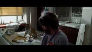 Мальчишник Часть 3. Мальчишник в Вегасе 3. Русский трейлер Red Band '2013'. HD | Кинокухня.рф