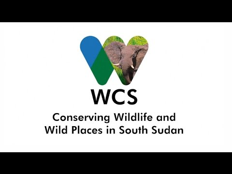 Wcs South Sudan