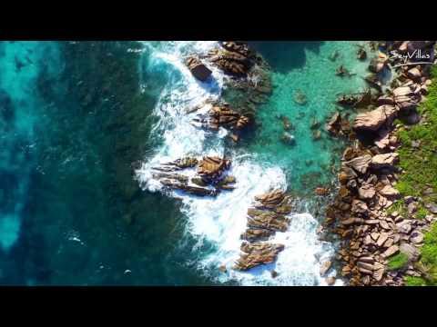 Swim At Anse Lazio