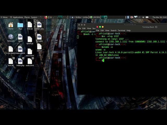 Reverse Shell Using Bash | BlackHat-HC - YouTube