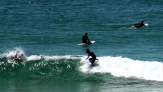 Surfing at Cabarita Beach NSW