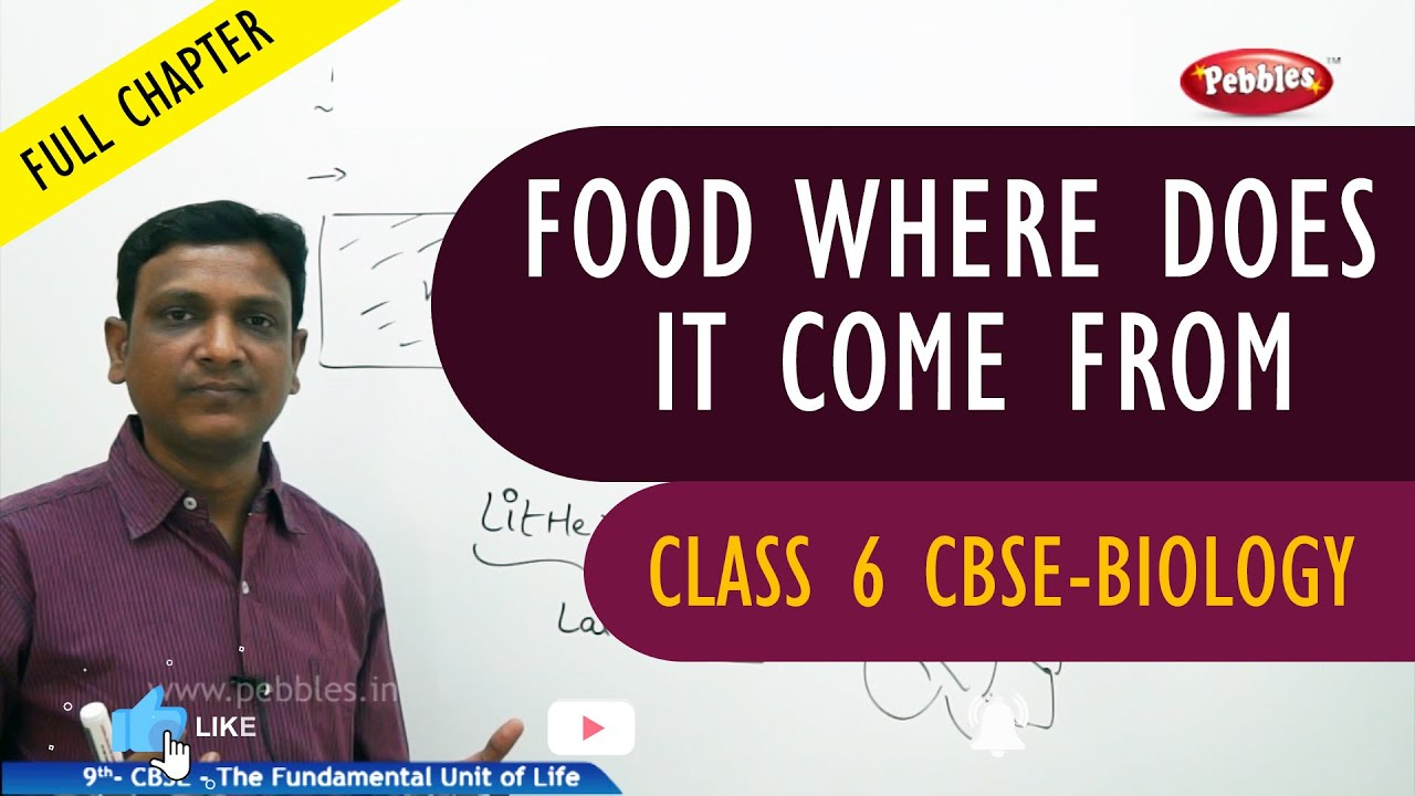 FOOD WHERE DOES IT COME FROM full chapter | Biology | Class 6 | CBSE Syllabus