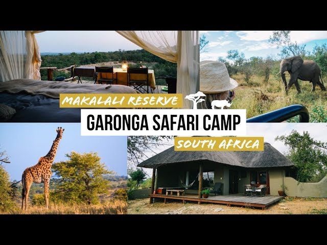 Garonga Safari Camp - Makalali Game Reserve South Africa - Südafrika