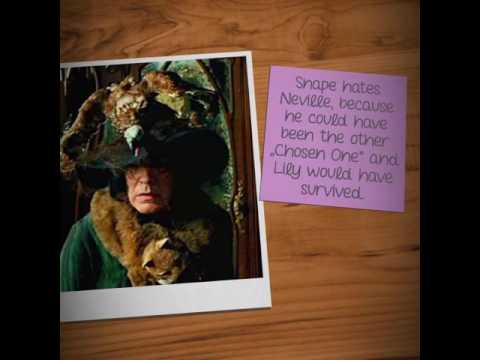 TEN THINGS YOU DON'T KNOW ABOUT HARRY POTTER