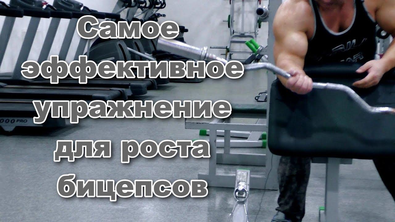 Самое эффективное упражнение для роста бицепсов