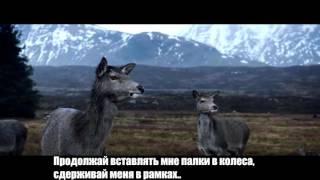 BONES 90210 Русский перевод