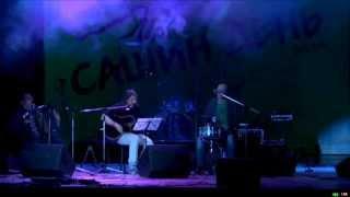 САШИН ДЕНЬ, 2014. Калинов мост - Ветка огненной омелы (live)