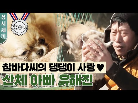(ENG/SPA/IND) [#ThreeMealsaDay] The Cutest Puppy Video We Just Have to Share | #Mix_Clip | #Diggle