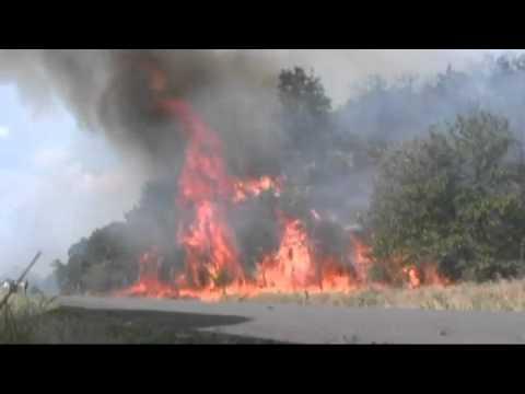 Stillwater fire