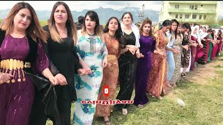 #govend #halay #kürtçehalay tayyan kerevan aşireti düğünleri