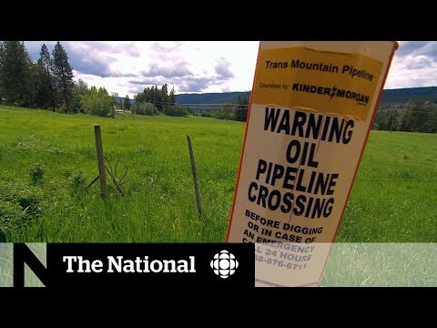 CBC News: The National: First Nation in path of Trans Mountain expansion left with questions after approval