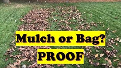 PROVING the leaf mulch theory! Better to Mulch or Bag Leaves? (LAWN CARE)
