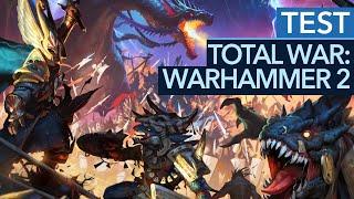 Total War: Warhammer 2 - Test / Review: Tolle Schlachten, ein entscheidender Fehler (Gameplay)