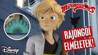 Eszméletlen elméletek – Szuperszülők  I Miraculous I Disney Csatorna