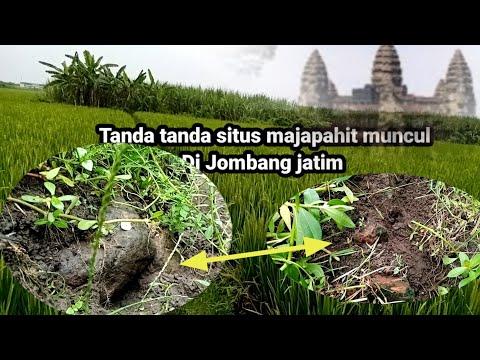 Inilah Salah Satu Tanda Situs Majapahit Muncul Di Desa Keras Diwek Jombang Jawa Timur