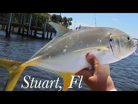 Our First Time... Stuart, Fl Inshore Fishing