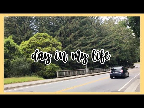 Day In My Life @ UCSC || Somya Bhatia