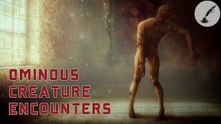 4 Ominous Unexplained Creature Encounters | Real Paranormal Stories Series