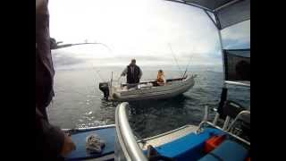 Wenderholm Fishing Trip - Frewza 4.1 and Zego 3.0