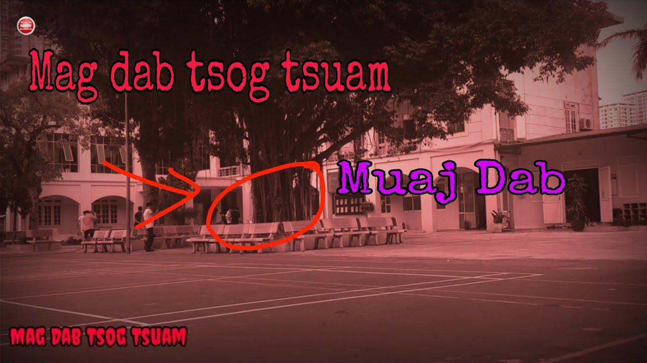 Mag Dab Tsog Tsuam Txaus Tshai Heev   3HMOOB JP