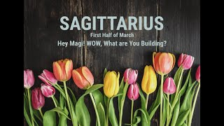 SAGITTARIUS: First Half of March - Hey There Magi - Wow, What Are You Building?
