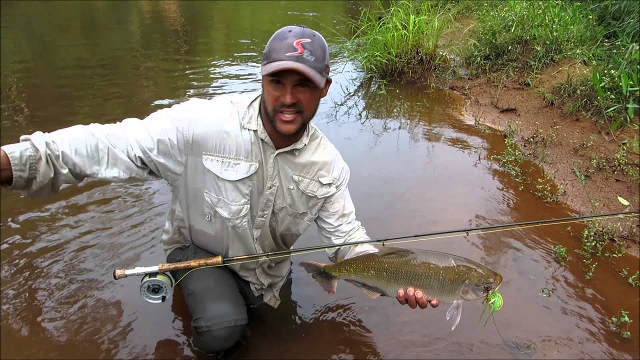 amazon fly fishing peru youtube