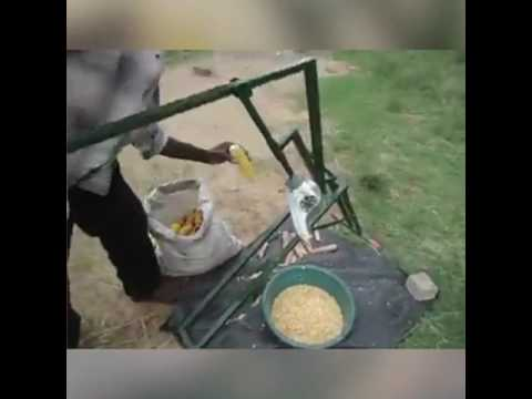Amazing instrument that cuts corn off the cob.