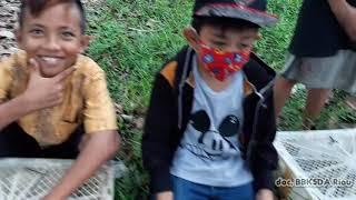 Anak-anak membantu BBKSDA riau melakukan pelepasliaran burung di TWA.  Buluh Cina