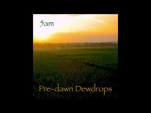 5am - Pre-dawn Dewdrops