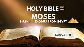 Holy Bible : Moses' Birth thru Exodus from Egypt (Exo 1 - 15)