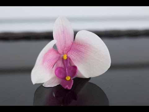 Как сделать орхидею из мастики