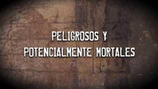 UNODC - 'Mira más allá' - Español