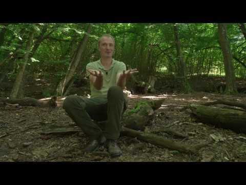Cu Tibor Hartel despre cercetarea în domeniul protecției naturii