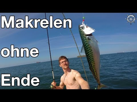 Single manner cuxhaven