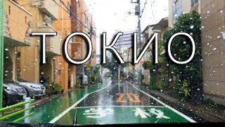 ЧТО ДЕЛАТЬ В ЯПОНИИ В ДОЖДЬ. Последствия тайфуна. Гид по Токио