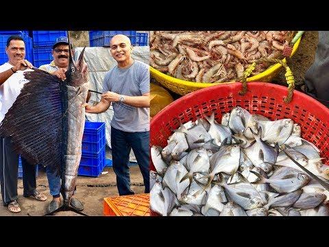 Mangalore's LARGEST SEAFOOD MARKET|Incredible Variety Of Seafood|Mangalore BUNDER|Affordable, Fresh!