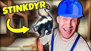 GULD SNIFFENDE STINKDYR! - Dansk Roblox: Gold Venture