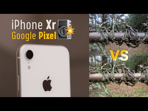 iPhone Xr vs Google Pixel RAW camera comparison - which take better PHOTOS?