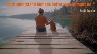 Dogs understand humans better than humans do
