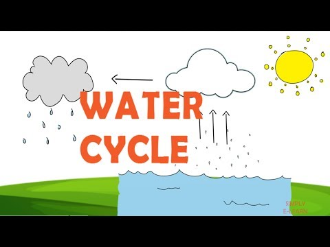 Water Cycle facts for kids - Information about water cycle - Precipitation - Simply E-learn Kids